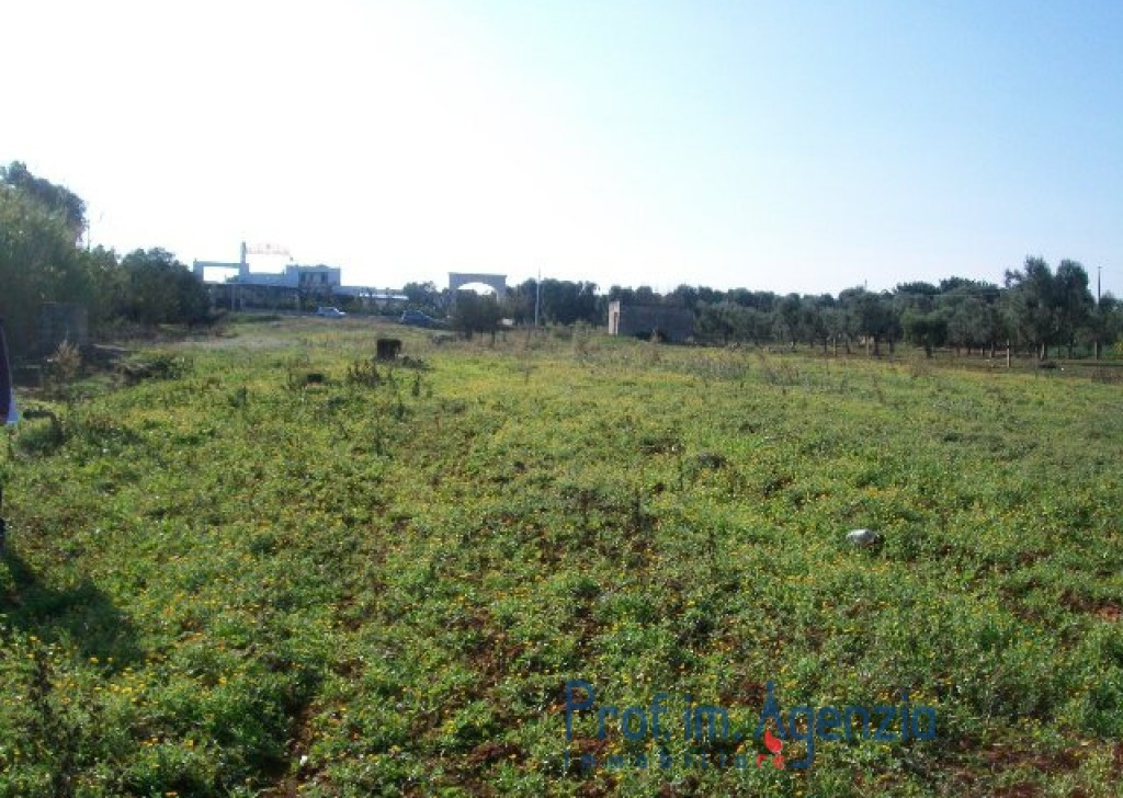 Sale Sea view plots of land Carovigno - Wonderful plot of land sea view with lamia Locality Agro di Carovigno