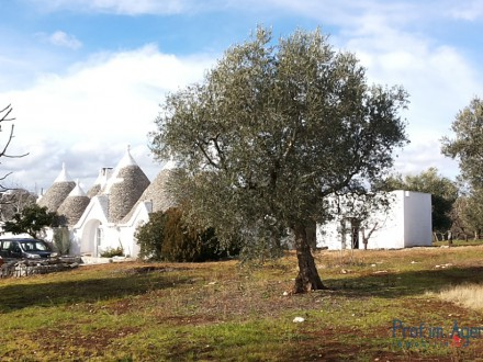 Stone farm of very beautiful and majestic trulli and lamie.