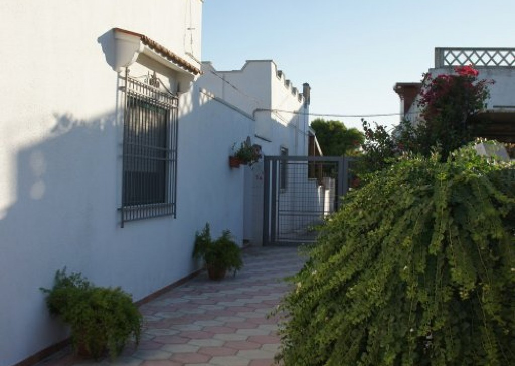 Sale Seaside houses Manduria - Magnificent villa on the beach with a lush garden Locality Agro di Manduria