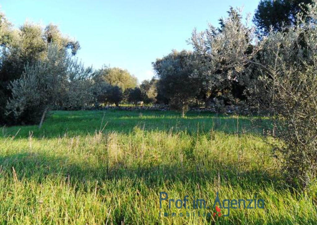 Sale Farm houses Carovigno - Typical building entirely in stone Locality Agro di Carovigno
