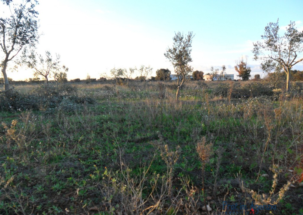 Sale Plots with building permit  Carovigno - Interesting Plot of land with approved project Locality Agro di Carovigno