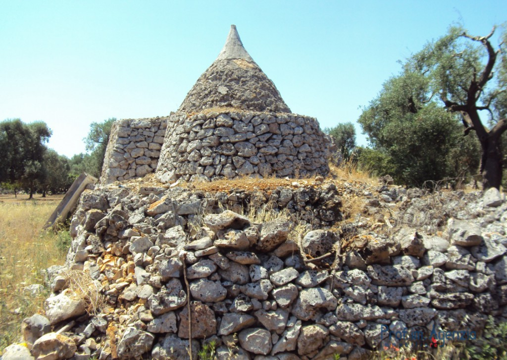 Sale Trulli to be restored/expanded San Michele S. - Beautiful trullo sited on a large plot of land with old-centuries olive groves Locality Agro di San Michele Salentino
