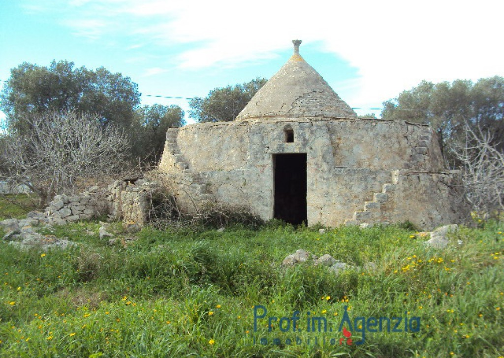 Sale Trulli to be restored/expanded Carovigno - Interesting trullo Locality Agro di Carovigno