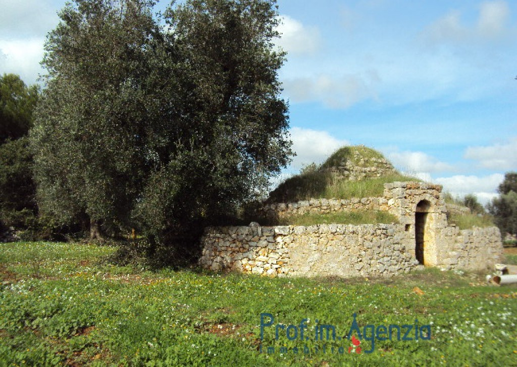 Sale Trulli to be restored/expanded S. Vito dei N. - 1 coned trullo with 2 alcoves  Locality Agro di San Vito dei Normanni