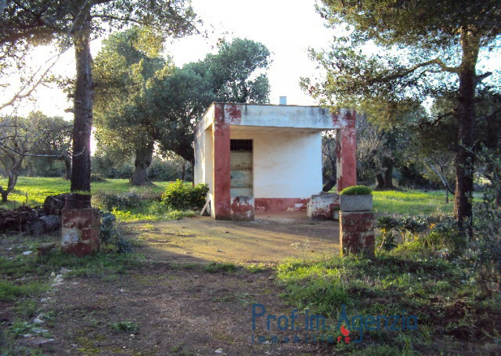 Sale Cottages Carovigno - Lamia of about 20 sqm with veranda Locality Agro di Carovigno