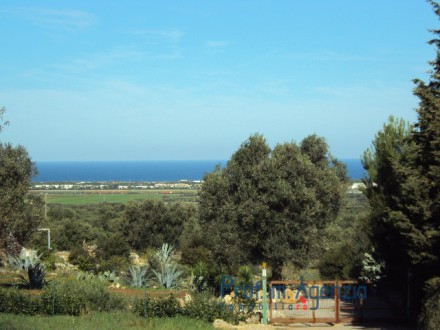 Wonderful Plot of Land sea view with olive grove