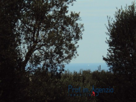 Beautiful Plot sea view with approved preject