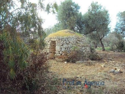Beautiful land with Saracen Trullo in stone