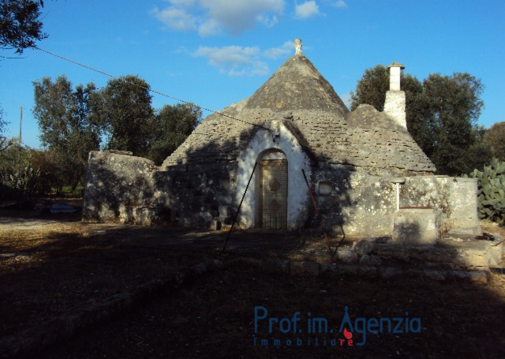 Sale Trulli to be restored/expanded Ceglie Messapica - Beutiful trullo with 3 cones, in excellent structural condition on a magnificent olive grove Locality Agro di Ceglie Messapica