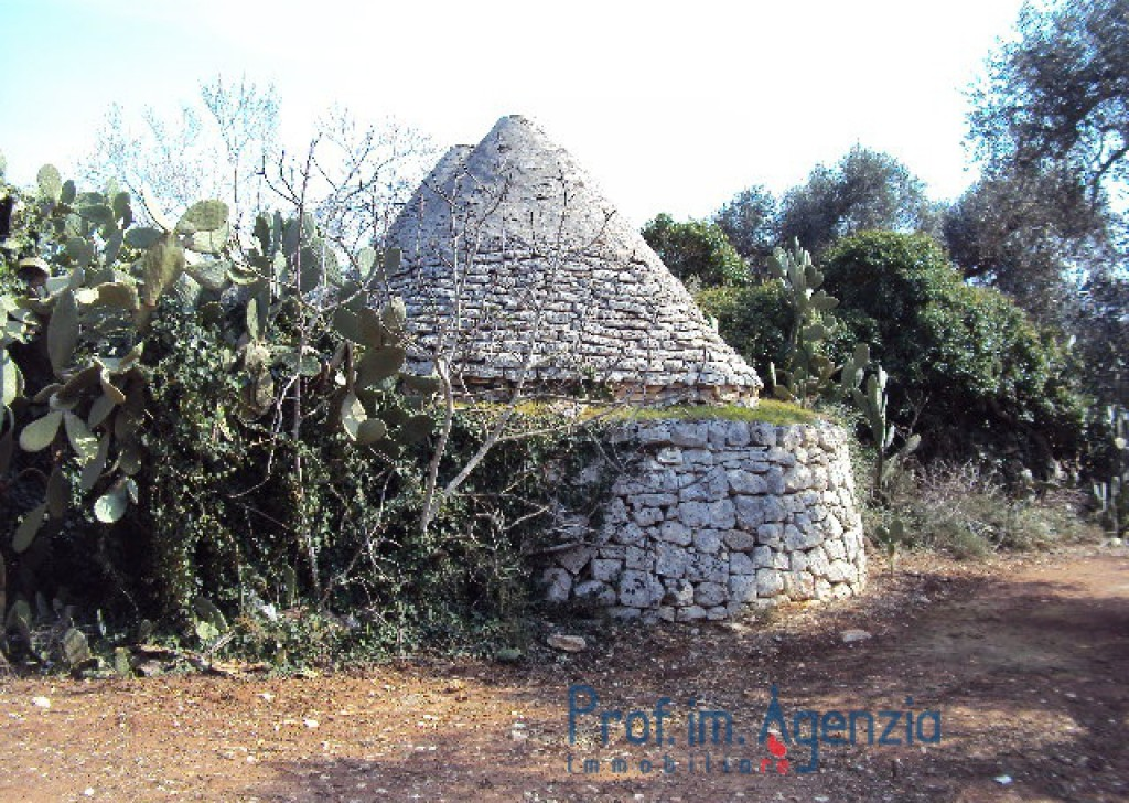 Sale Trulli to be restored/expanded Latiano - Very prety Trullo with 3 cones and lamia on a beautiful olive grove Locality Agro di Latiano