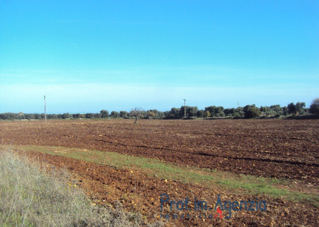 Sale Sea view plots of land Carovigno - Wide land with sea view at only 2 km to the beach Locality Agro di Carovigno
