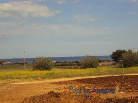 Beautiful flat plot of land sea view