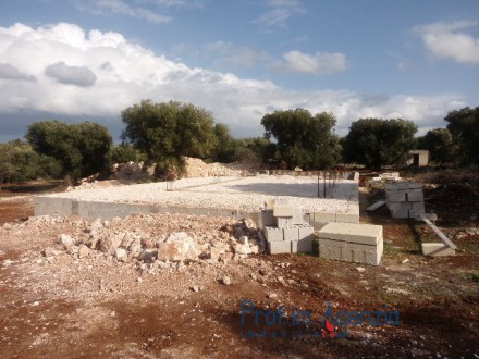Interesting plot of land with sea view and centuries-old olive grove
