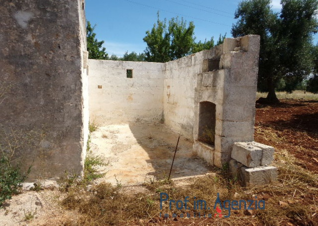 Sale Land plots with centuries-old olive groves Carovigno - Interesting plot of land with olive grove, in a strategic area a few minutes to the sea Locality Agro di Carovigno