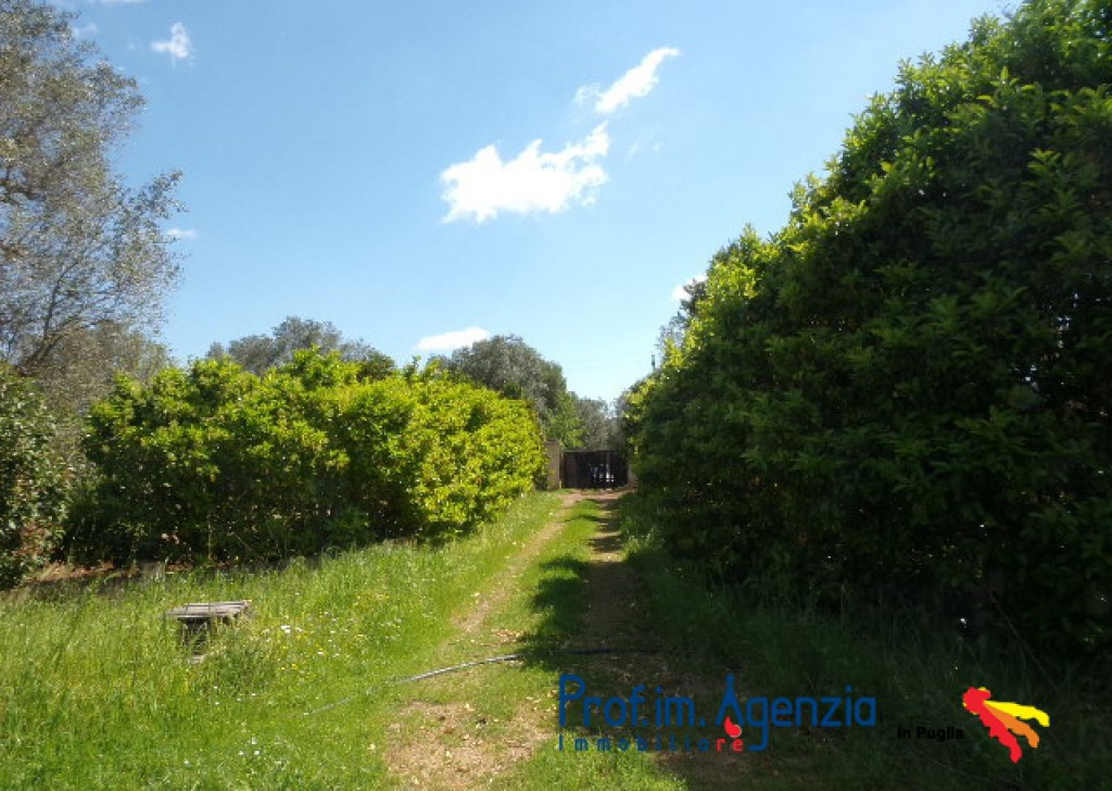 Sale Farm houses Oria - Interesting farmhouse Locality Agro di Oria