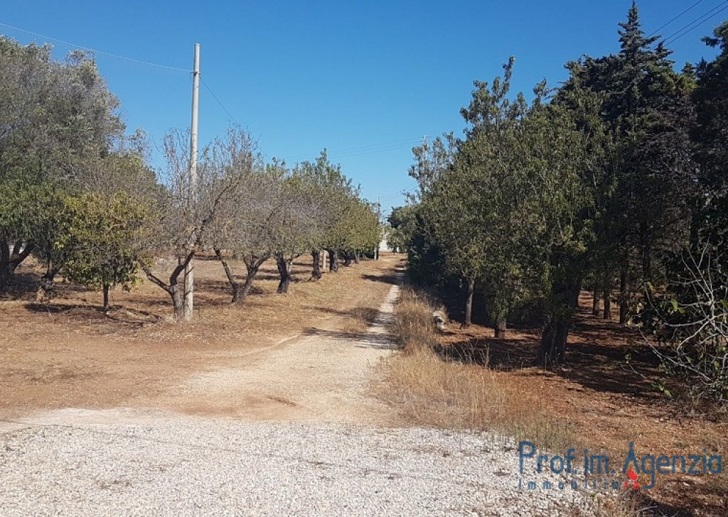 Sale Country houses Brindisi - Villa in the countryside Locality Agro di Brindisi