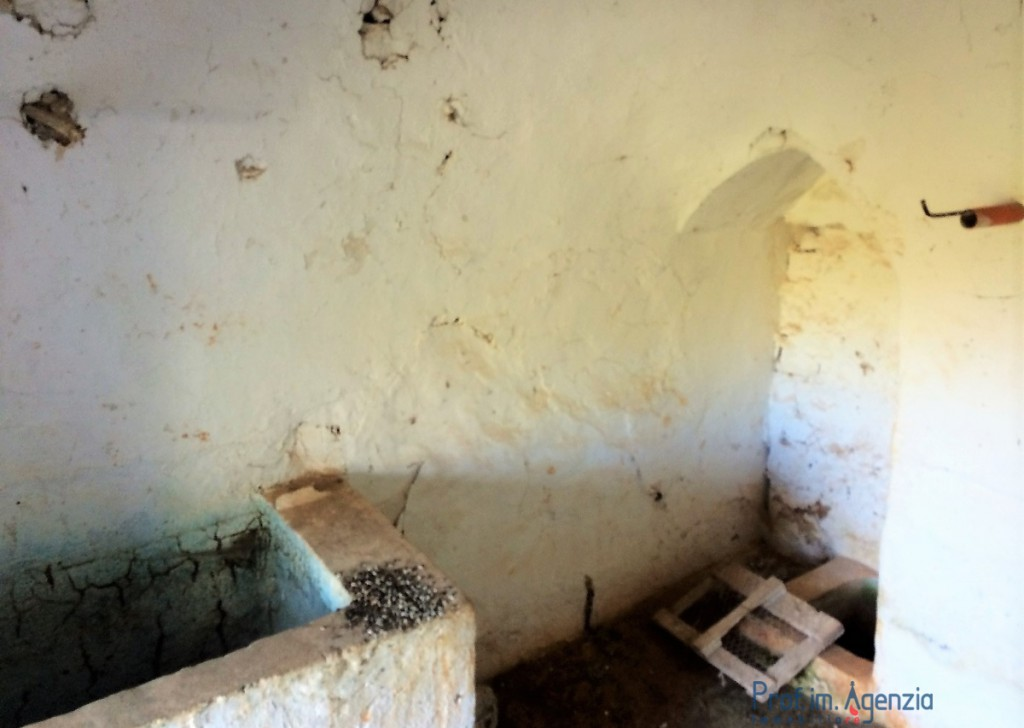 Sale Trulli to be restored/expanded Ostuni - Trullo with a panoramic view Locality Agro di Ostuni